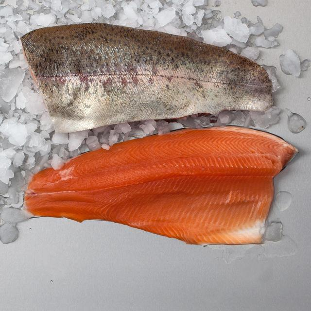 trout fillets on ice